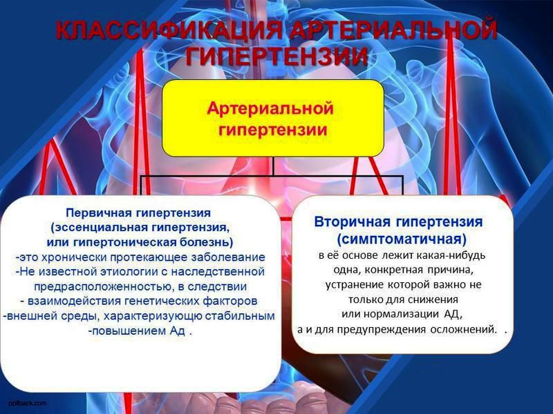 Первичная и вторичная гипертония