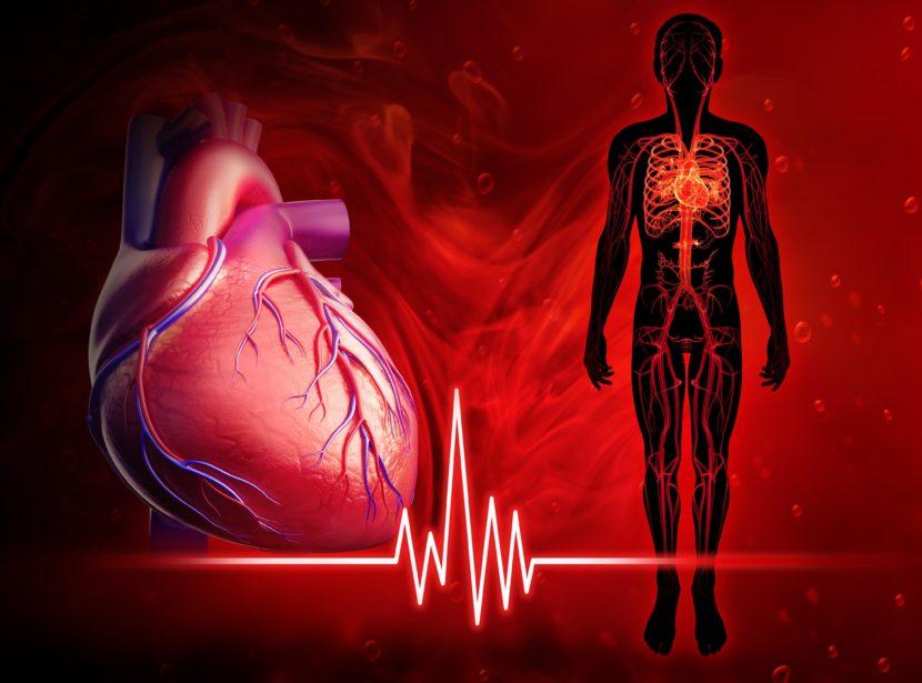 Дыхательная аритмия — что это такое?