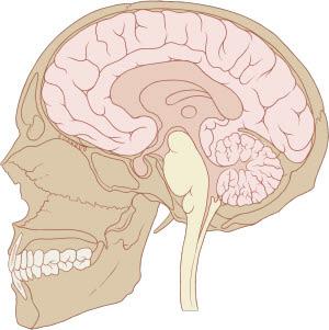 Синдром турецкого седла в головном мозге: признаки, лечение, последствия