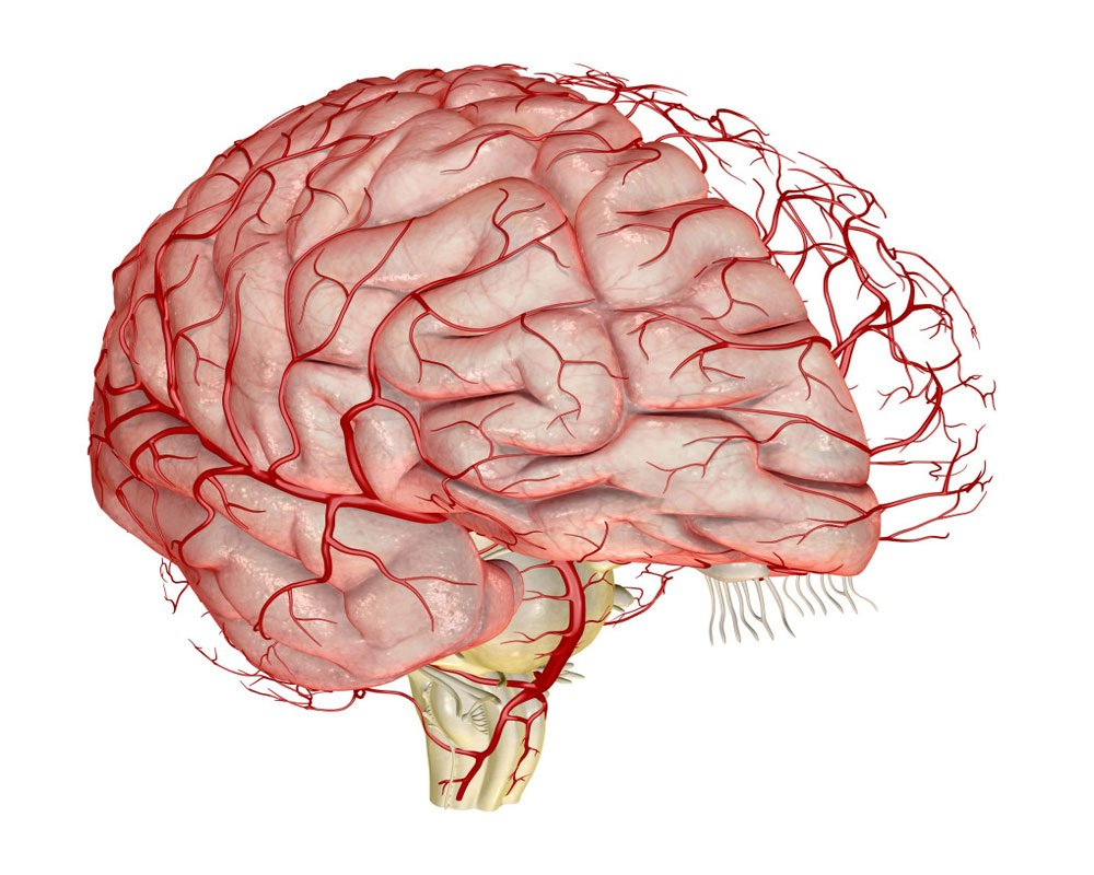 Часто при поражении церебральных артерий возникает нарастающая депрессия