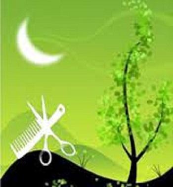Лунный календарь для стрижки детям волос