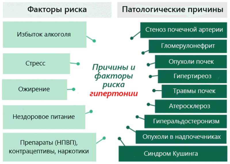 Причины возникновения гипертонического заболевания