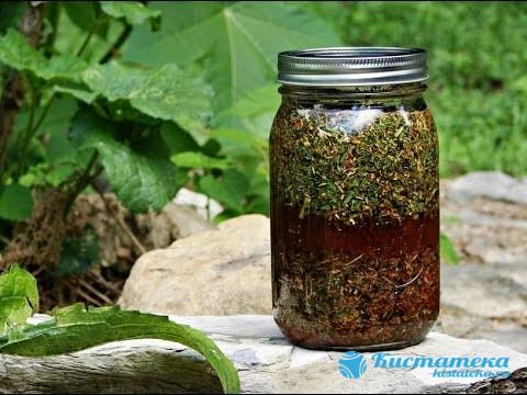 Лекарственные травы помогают избавиться от болевы ощущений