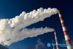 Могут повлиять и экологические факторы