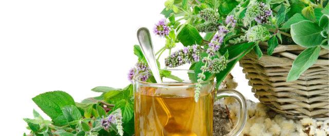 Для лечения данного заболевания используются растения, обладающие многими свойствами, но основные из них – это антиаритмическое, сосудорасширяющее, успокаивающее, кардиотоническое