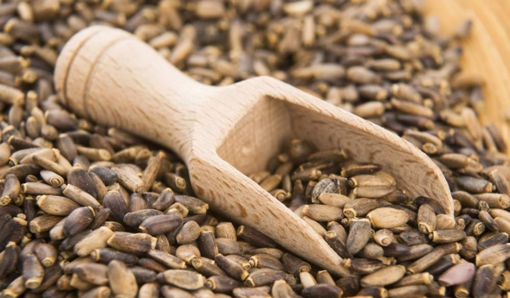 Расторопша – лучшее средство для снижения холестерина в крови