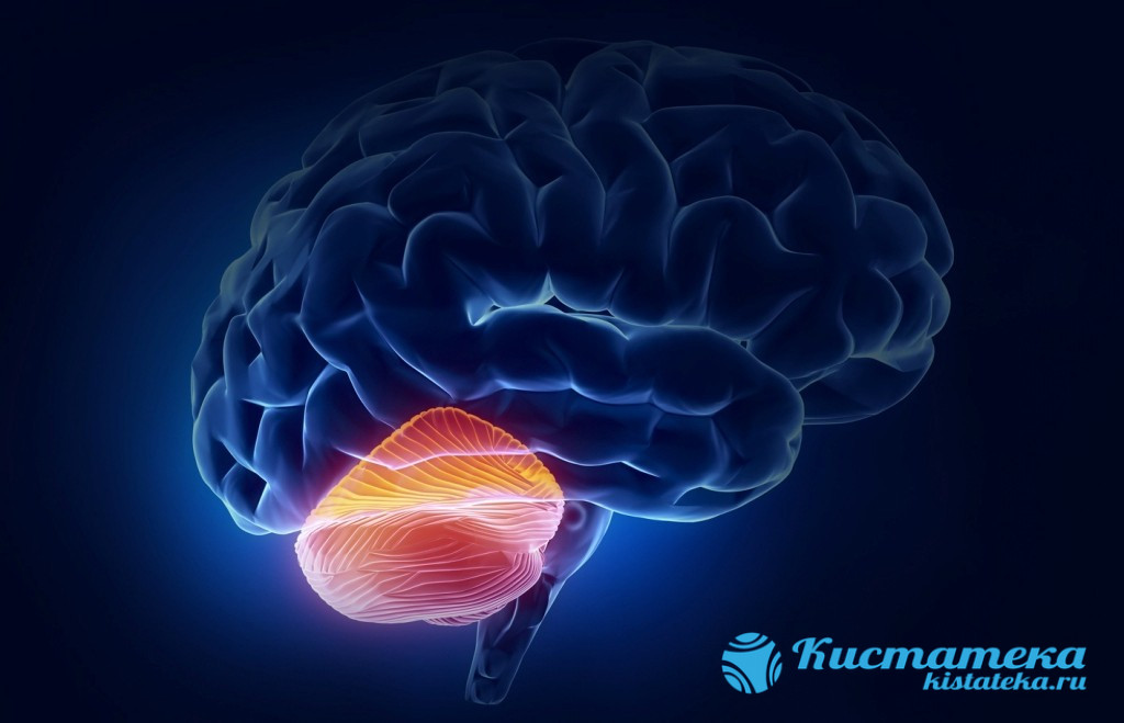 Грозит сбоем в мозговой деятельности и параличом конечностей