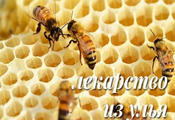Пчеоиный клей при варикозе