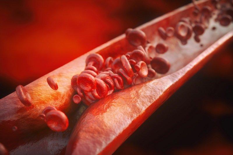 Препарат снижает плазменное содержание общего холестерина, способствует подавлению ранних стадий биосинтеза холестерина и незначительному замедлению всасывания пищевого холестерина