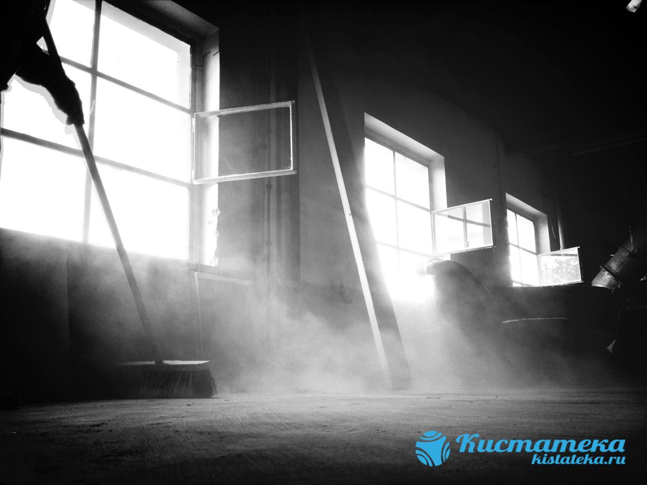 Частое наождение в пыльны помещения с низкой влажностью