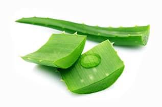Сок лечебного растения