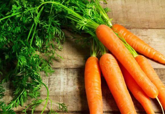 Морковь от варикозной болезни