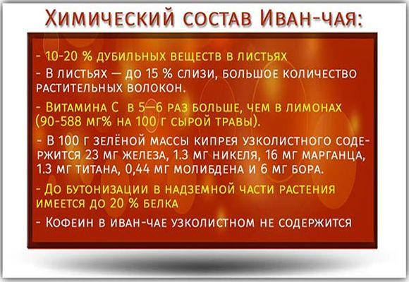 Химический состав Иван-чая
