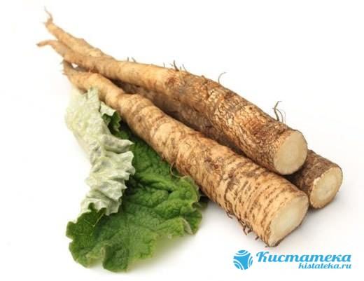 Настойку из корня лопуа употребляют дважды в день перед едой