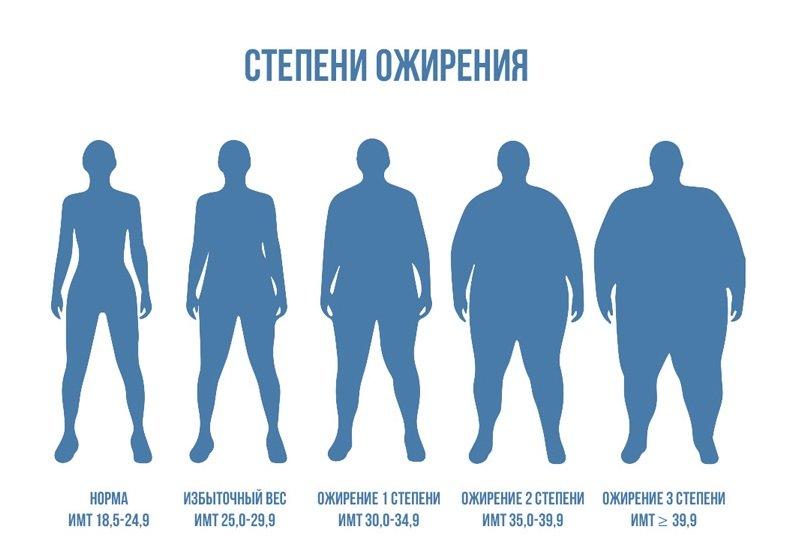 Ожирение наследственной природы происхождения легко предотвратить, соблюдая основы правильного питания.