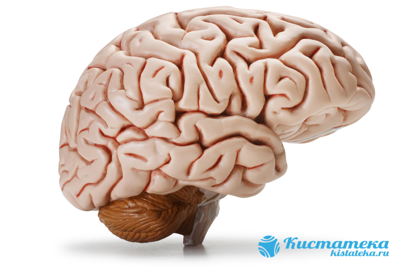 Часто развивается из-за меанически травм мозговы оболочек