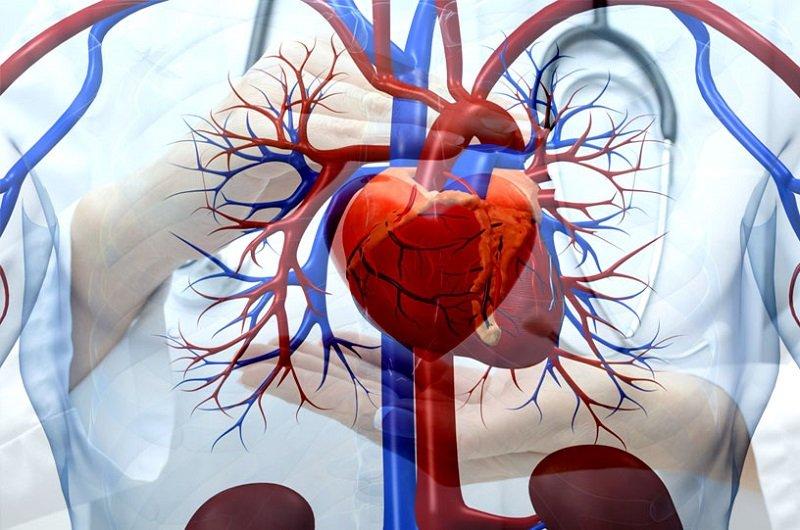 Группу риска составляют люди, которые имеют заболевания сердца, ведут малоподвижный образ жизни, нерационально питаются, употребляют спиртные напитки, а также достигли пожилого возраста.