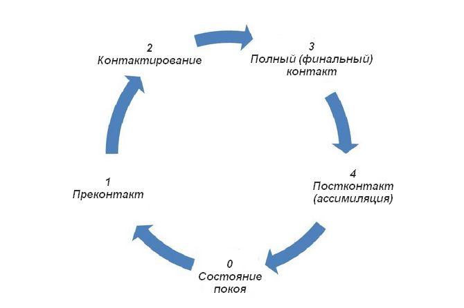 Схема полного цикла контакта при гештальт-терапии