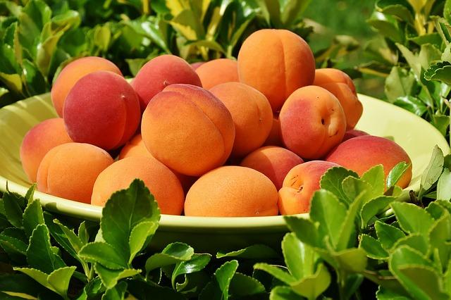 чашка с абрикосами