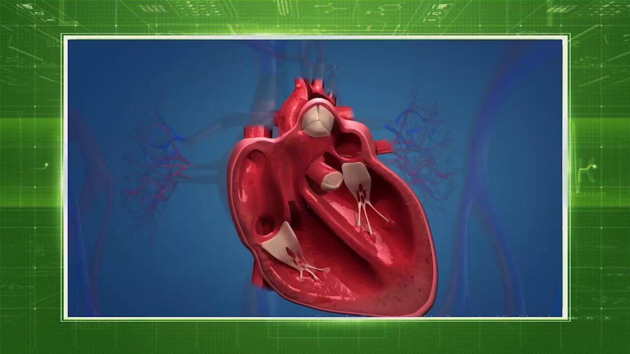 Чтобы снизить вероятность сердечно-сосудистых катастроф рекомендуется ограничить себя от стрессовых ситуаций