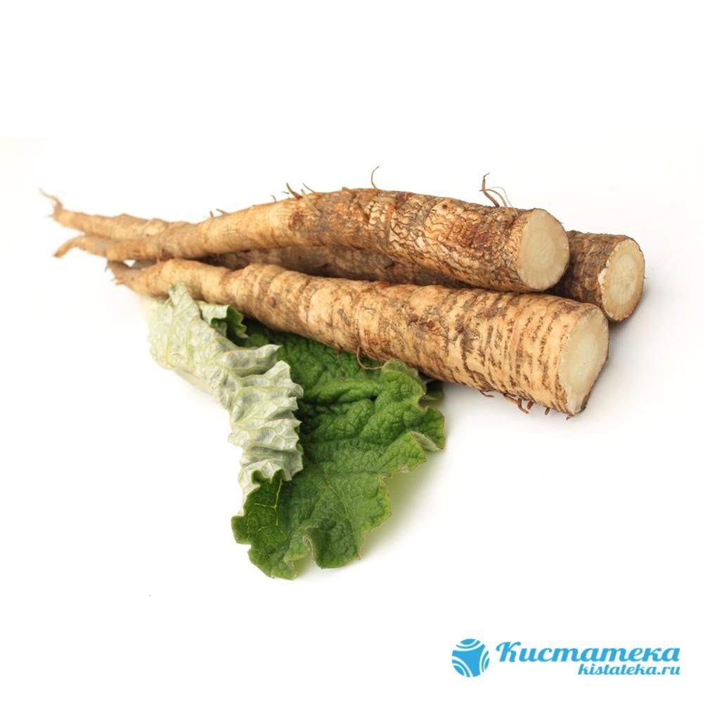 Растение обладает комплексным действием, применяется для устранения инфекции