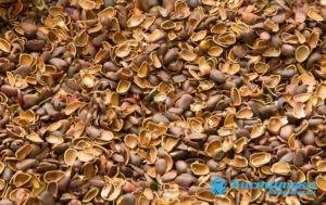 Средства на основе скорлупы применяют при разны поражения печени