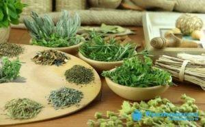 Примочки из настоев на основе растений и трав прикладывают к пораженному участку кожи