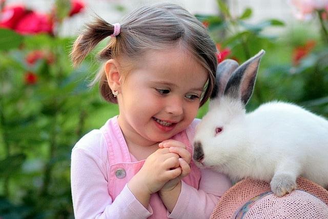 девочка держит кролика на плече