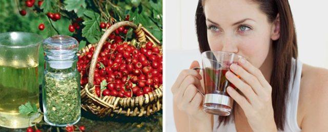 Регулярное употребление яблок задерживает развитие атеросклероза. 2–3 и больше яблок ежедневно снижают уровень холестерина на 10–14%