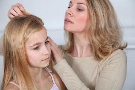 Вши в волосах ребенка