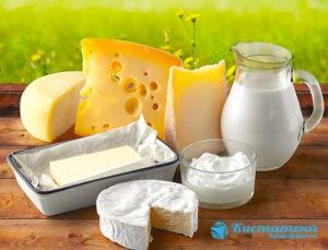Молоко, сыр, творог, кефир - ускоряют заживление тканей