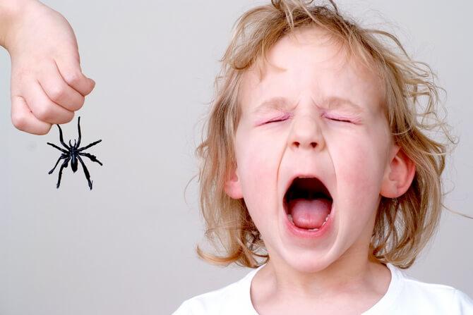 Ребёнок боится паука