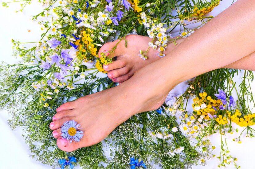 Варикоз вен на ногах - лечение народными средствами