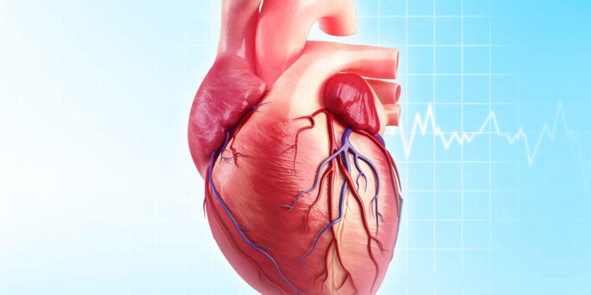МКБ-10 — ишемическая болезнь сердца (l20–l25)
